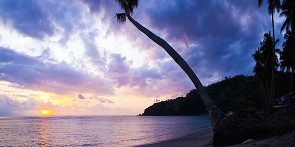 Triste Tropiques Revisited